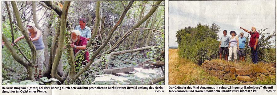 Horwart Bingemer, Barbelroth