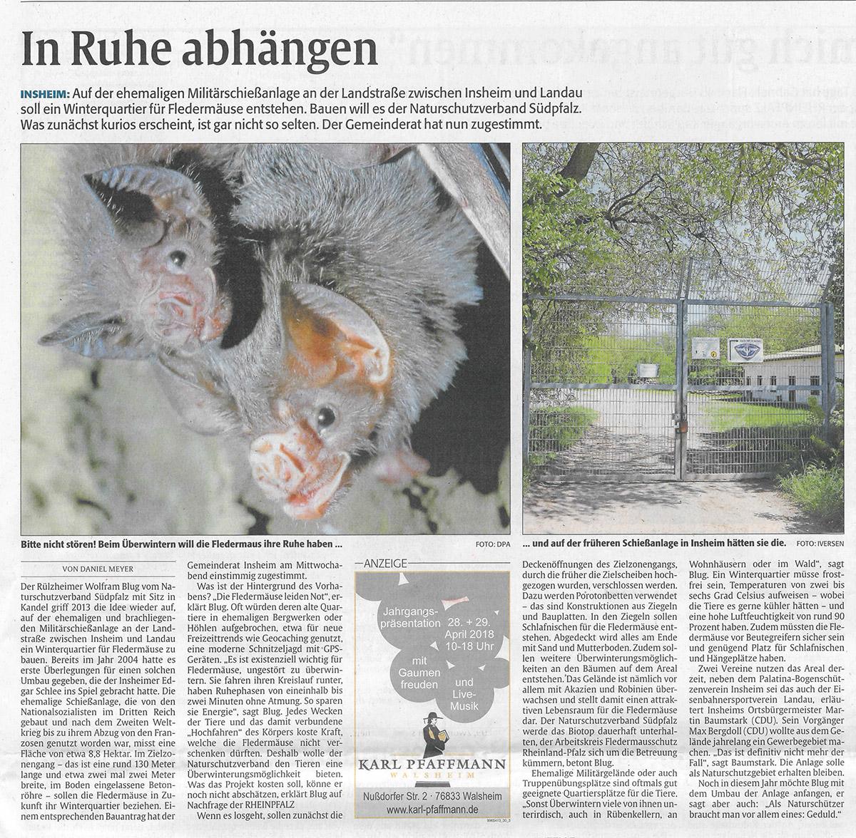 Ehemalige Schießanlage bei Insheim als Winterquartier für Fledermäuse