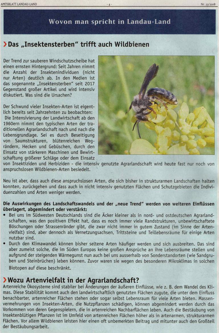 Artikel Insektensterben