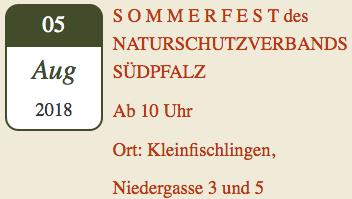 NVS-Sommerfest