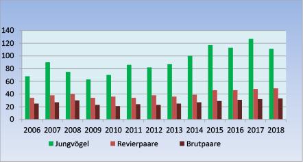 Steinkauzpopulation 2006-2018