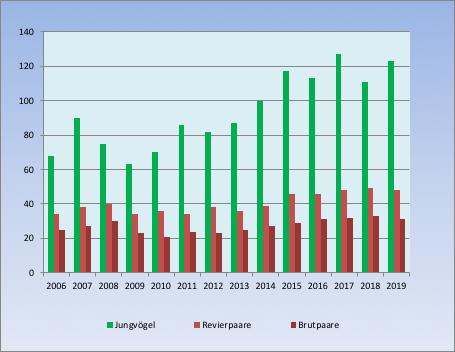 Steinkauz-Statistik