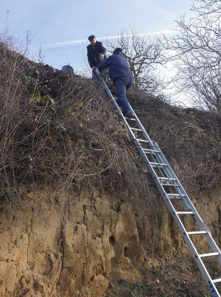 """Arbeitseinsatz """"Steile Wand"""" Insheim"""
