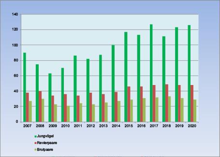 Steinkauzpopulation 2020 Diagramm