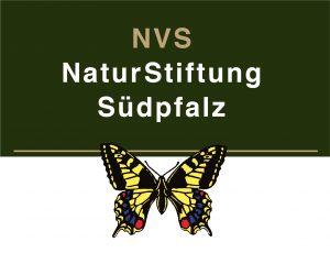 Logo NVS-NaturStiftung Südpfalz