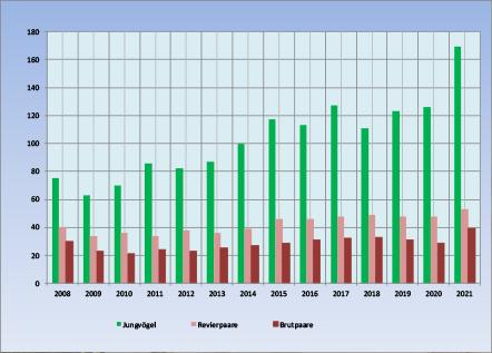 Steinkauzpopulation Südpfalz 2021