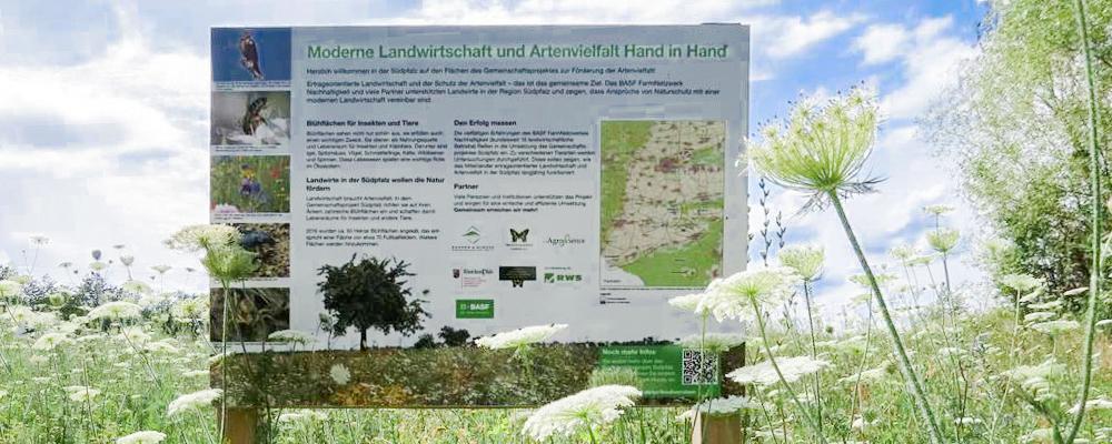 Biodiversitaet Modellprojekt