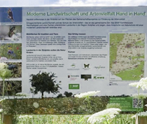 Biodiversität Modellprojekt Barbelroth